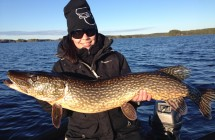 Evelina Uimonen with a pike 108 cm, which took on the vertical fishing with a small walleye jig.