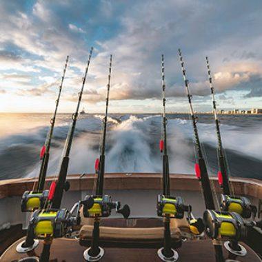 fish reportage on fisketidningen fiskemagasinet.se
